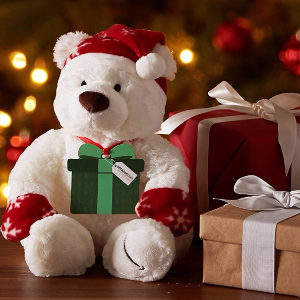 Free Teddy Bear! With $250 Amazon.com Gift Card Purchase