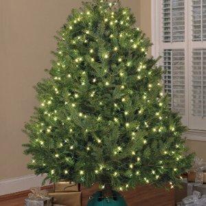 $3.99(原价$39.98) 反季囤白菜价:GE StayBright 圣诞树装饰灯