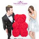 $35.09起 让永不凋零的玫瑰花见证爱情The Only Roses 浪漫精美永生玫瑰花热卖 情人节送礼好物