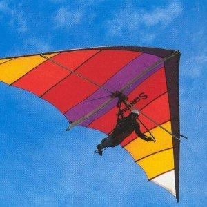 $127起San Jose 圣何塞 4小时滑翔翼飞行课程体验